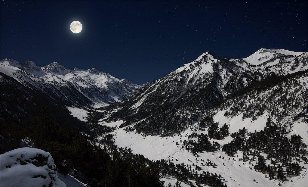 Moonlight-1.jpg